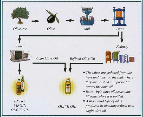 production of olive oil Olive oil from farmhouse b&b near malaga olive oil from andalucia special olive oil from a special place spain is the world largest producer of olive oil and in andalucia we produce 80% of.